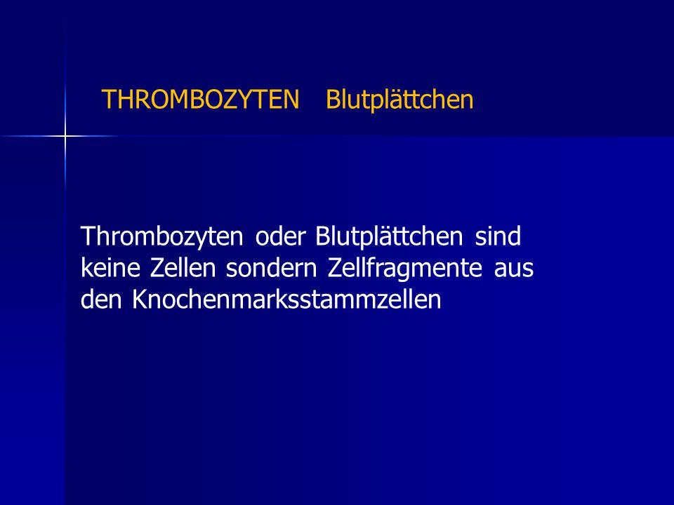 THROMBOZYTEN Blutplättchen Thrombozyten oder Blutplättchen sind keine Zellen sondern Zellfragmente aus den Knochenmarksstammzellen