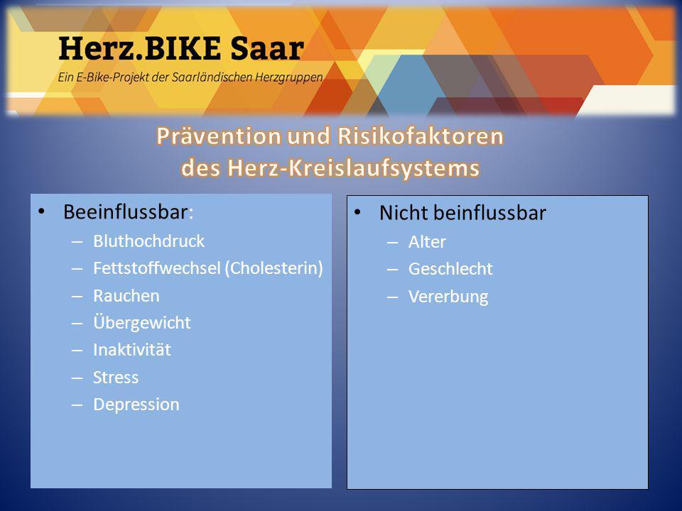 Beeinflussbar: – Bluthochdruck – Fettstoffwechsel (Cholesterin) – Rauchen – Übergewicht – Inaktivität – Stress – Depression Nicht beinflussbar – Alter