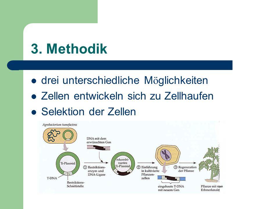 3. Methodik drei unterschiedliche M ö glichkeiten Zellen entwickeln sich zu Zellhaufen Selektion der Zellen