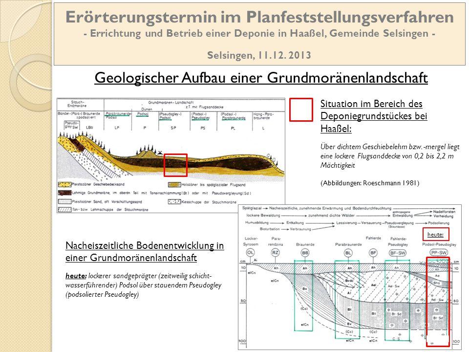 Geologischer Schnitt durch die Deponiefläche Quelle: Pieles & Gronemeier 1993 Geschiebelehm/-mergel weist nur eine sehr geringe Versickerungsleis-tung auf Erörterungstermin im Planfeststellungsverfahren - Errichtung und Betrieb einer Deponie in Haaßel, Gemeinde Selsingen - Selsingen, 11.12.