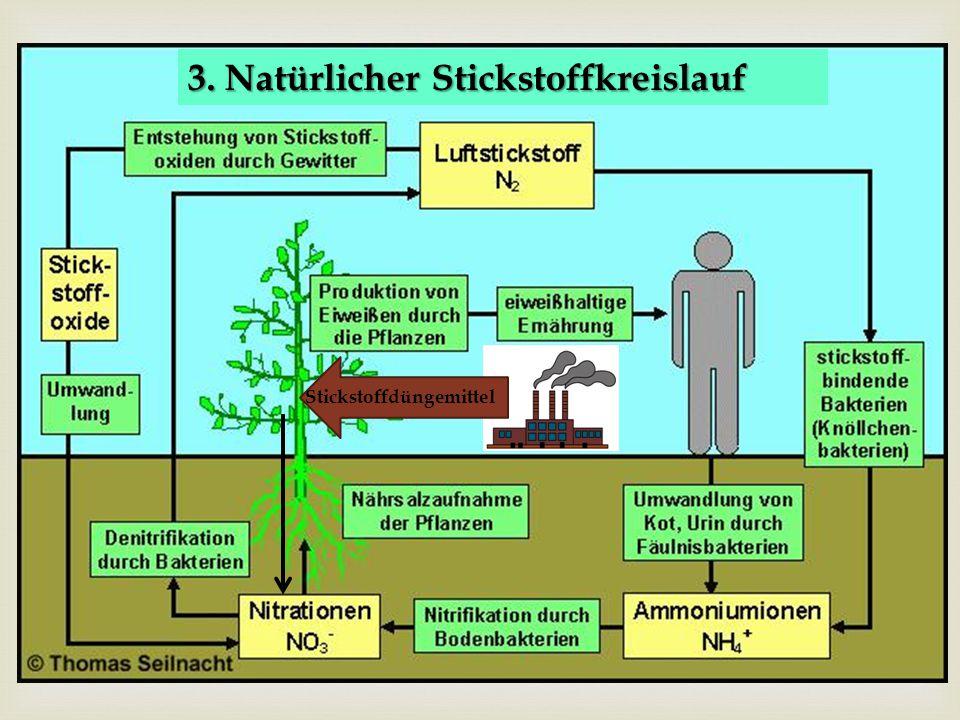  4. Anthropogener Stickstoffkreislauf Stickstoffdüngemittel 3. Natürlicher Stickstoffkreislauf
