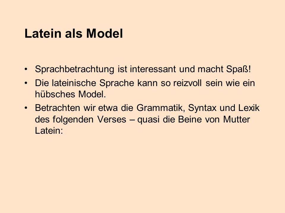Latein als Model Sprachbetrachtung ist interessant und macht Spaß! Die lateinische Sprache kann so reizvoll sein wie ein hübsches Model. Betrachten wi