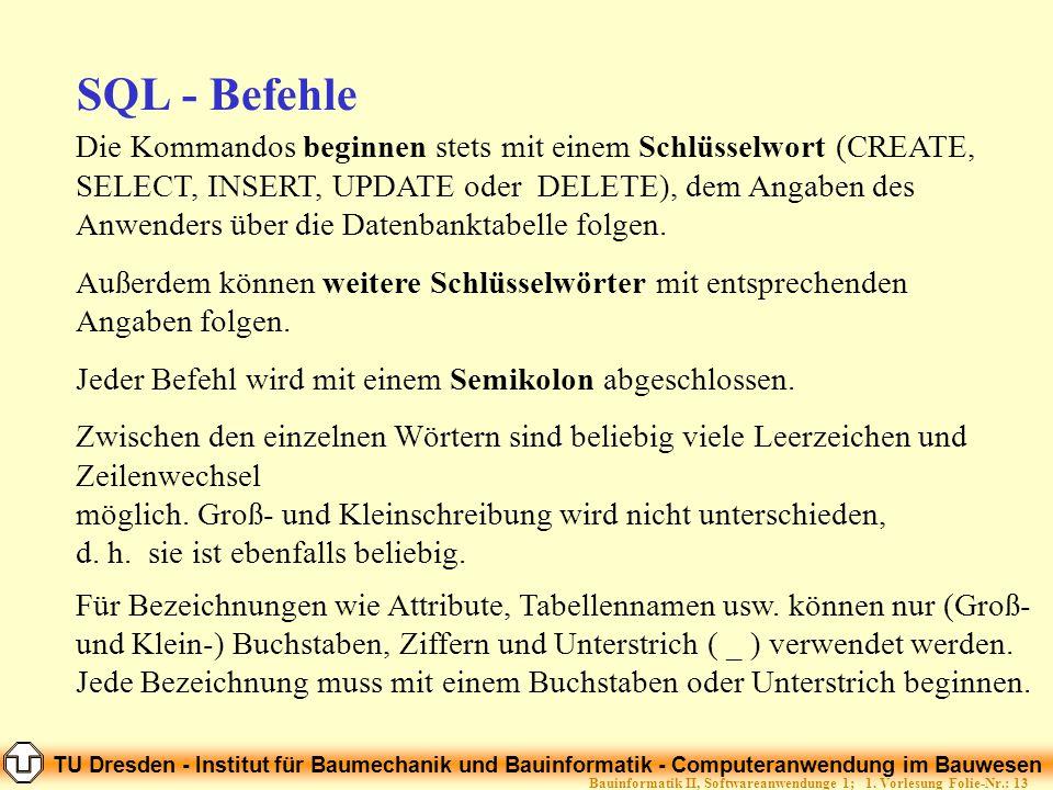 TU Dresden - Institut für Baumechanik und Bauinformatik - Computeranwendung im Bauwesen Folie-Nr.: 13Bauinformatik II, Softwareanwendunge 1; 1. Vorles