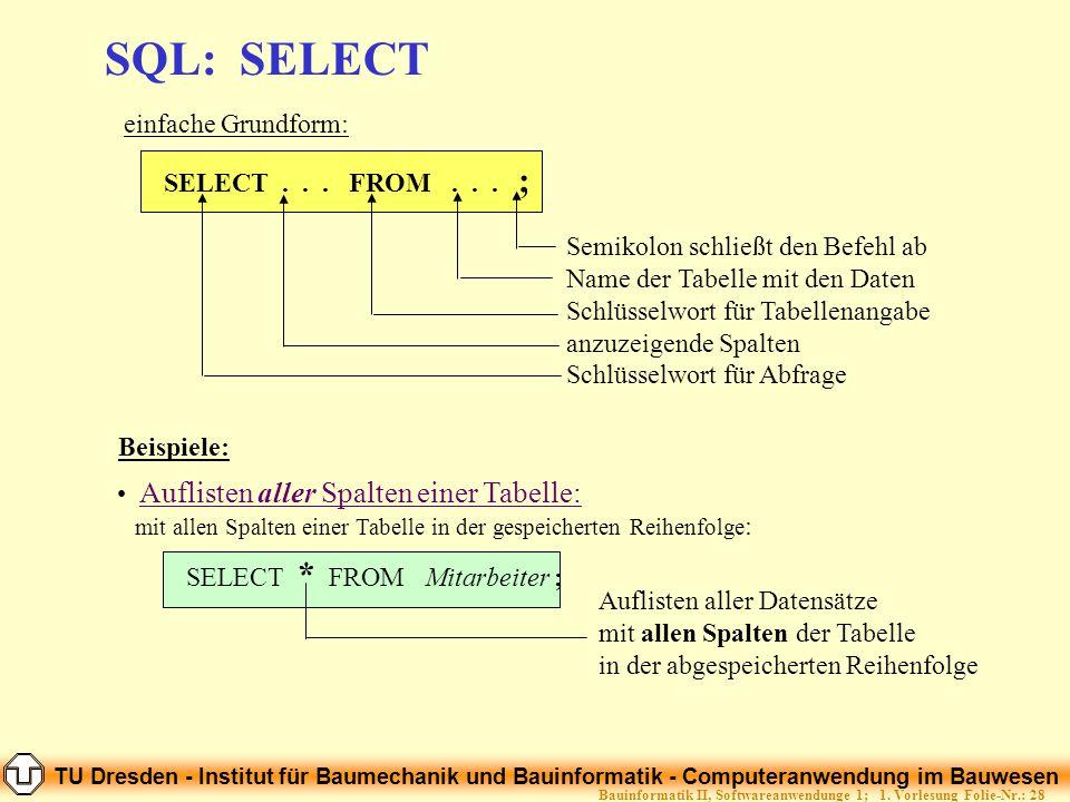 TU Dresden - Institut für Baumechanik und Bauinformatik - Computeranwendung im Bauwesen Folie-Nr.: 28Bauinformatik II, Softwareanwendunge 1; 1. Vorles