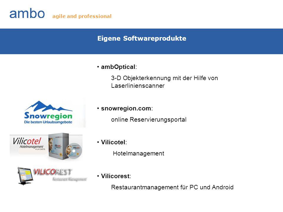 Eigene Softwareprodukte ambOptical: 3-D Objekterkennung mit der Hilfe von Laserlinienscanner snowregion.com: online Reservierungsportal Vilicotel: Hot
