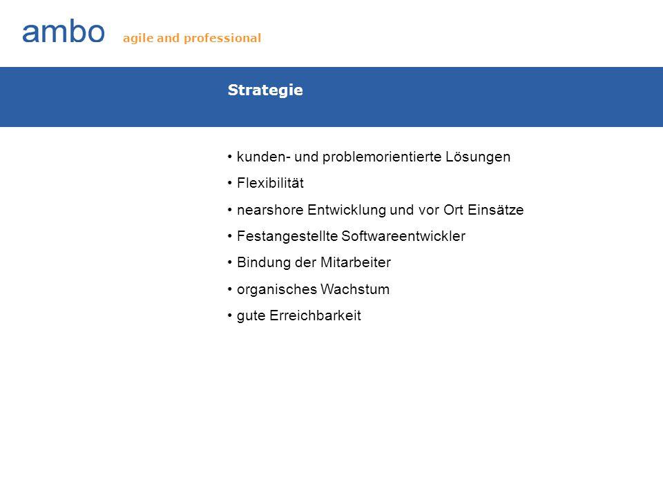 Strategie kunden- und problemorientierte Lösungen Flexibilität nearshore Entwicklung und vor Ort Einsätze Festangestellte Softwareentwickler Bindung d