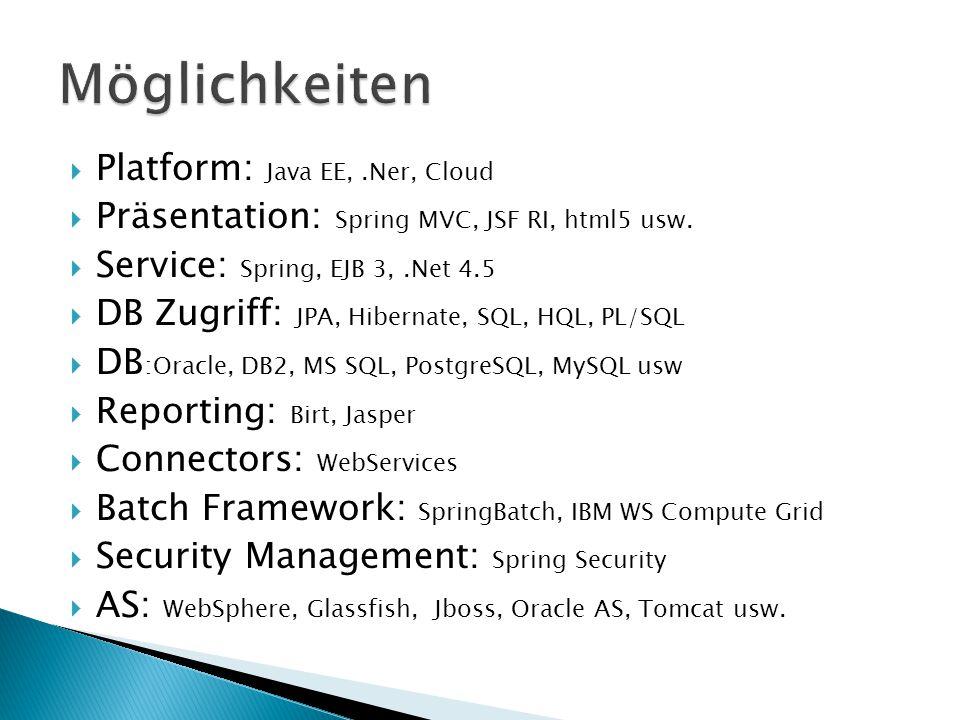  Platform: Java EE,.Ner, Cloud  Präsentation: Spring MVC, JSF RI, html5 usw.