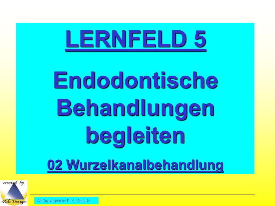 All Copyrights by P.-A. Oster ® LERNFELD 5 Endodontische Behandlungen begleiten 02 Wurzelkanalbehandlung