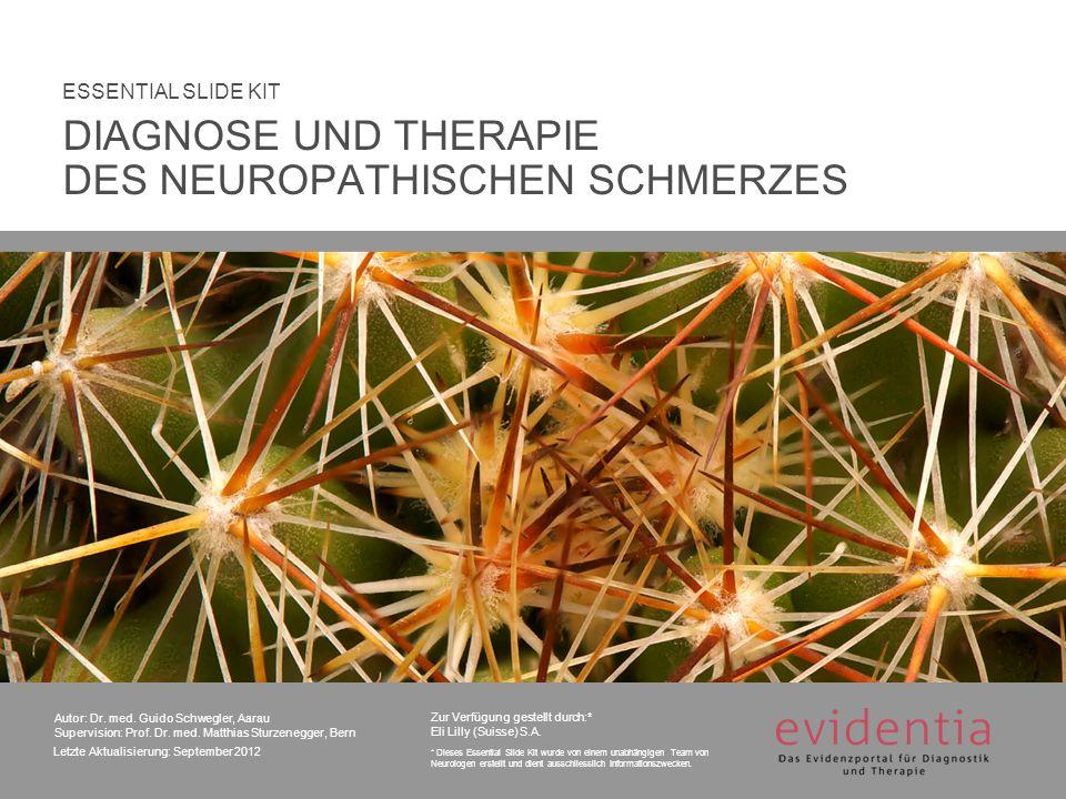 Autor: Dr.med. Guido Schwegler, Aarau Supervision: Prof.