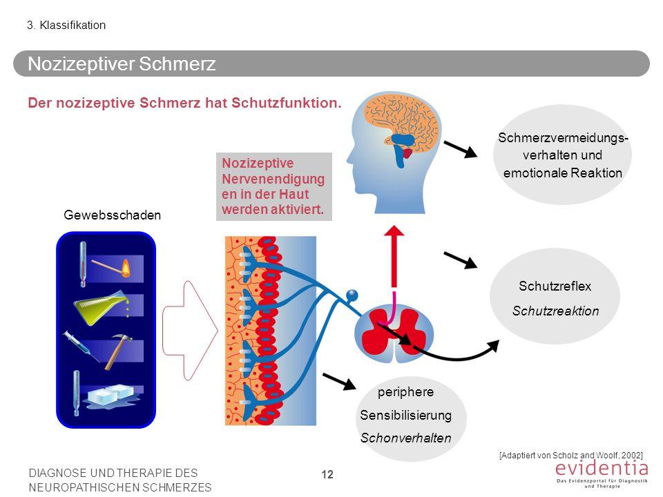 Schmerzvermeidungs- verhalten und emotionale Reaktion Schutzreflex Schutzreaktion Gewebsschaden Nozizeptiver Schmerz 3.