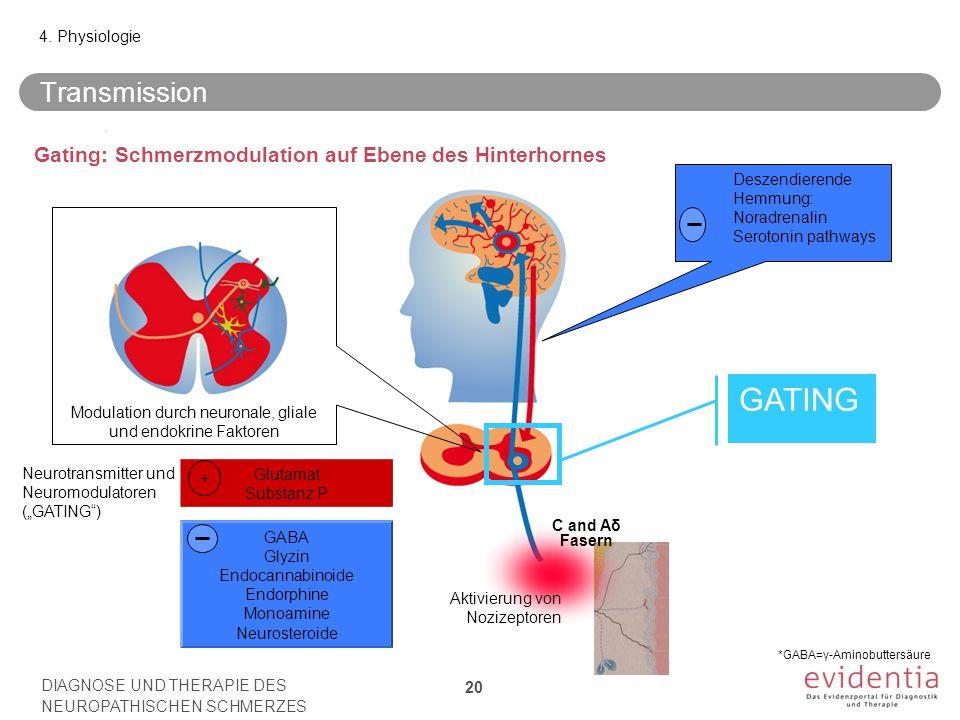 Transmission DIAGNOSE UND THERAPIE DES NEUROPATHISCHEN SCHMERZES 20 4. Physiologie Aktivierung von Nozizeptoren C and Aδ Fasern Deszendierende Hemmung