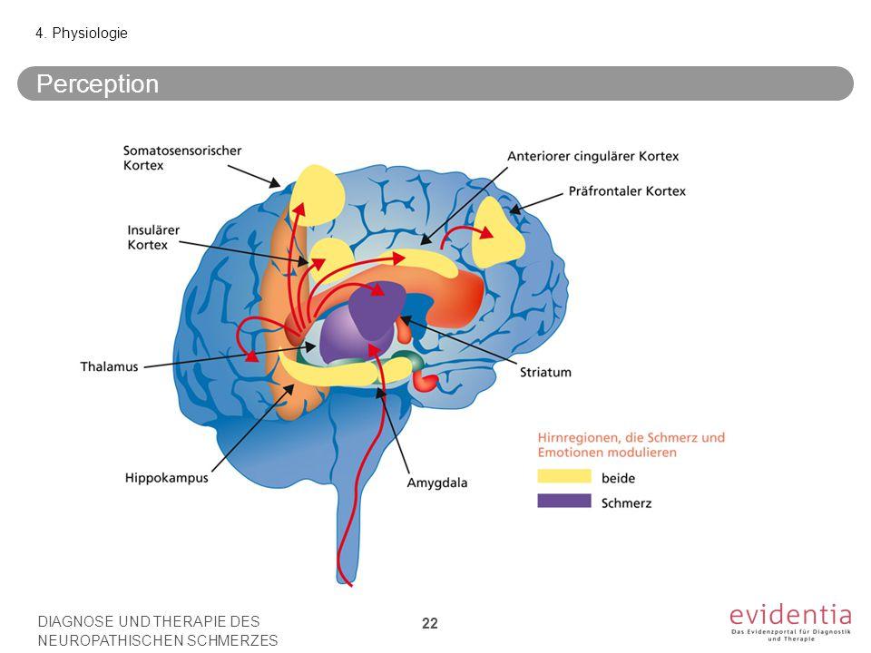 Perception 4. Physiologie 22 DIAGNOSE UND THERAPIE DES NEUROPATHISCHEN SCHMERZES
