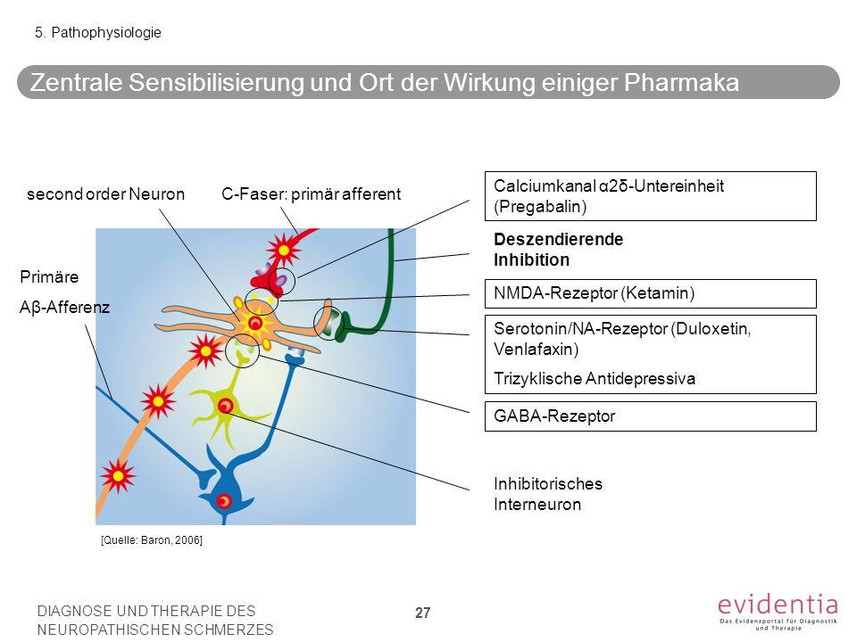 Zentrale Sensibilisierung und Ort der Wirkung einiger Pharmaka 27 5. Pathophysiologie [Quelle: Baron, 2006] Deszendierende Inhibition Primäre Aβ-Affer