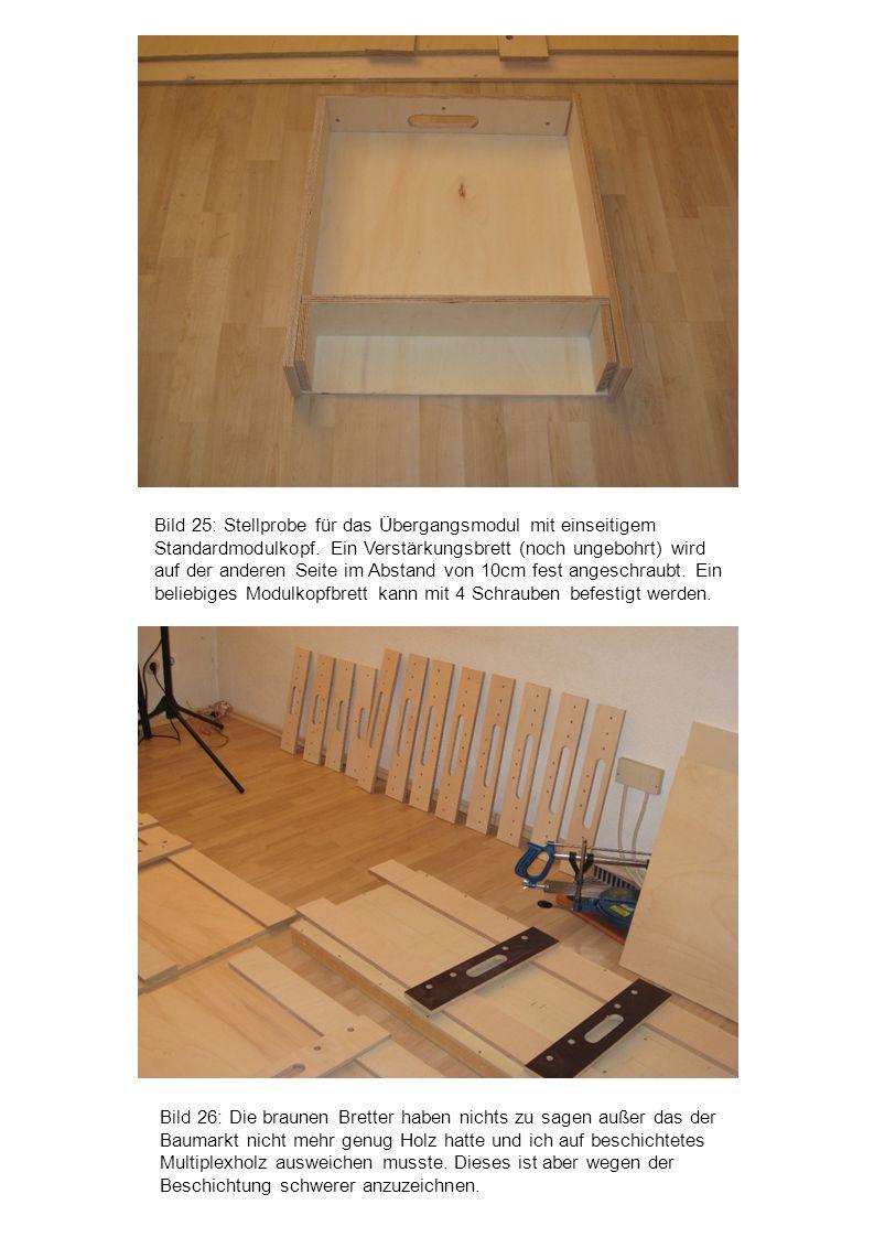 Bild 26: Die braunen Bretter haben nichts zu sagen außer das der Baumarkt nicht mehr genug Holz hatte und ich auf beschichtetes Multiplexholz ausweich