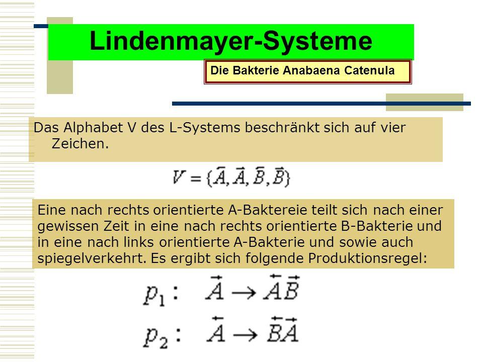 Lindenmayer-Systeme Das Alphabet V des L-Systems beschränkt sich auf vier Zeichen.
