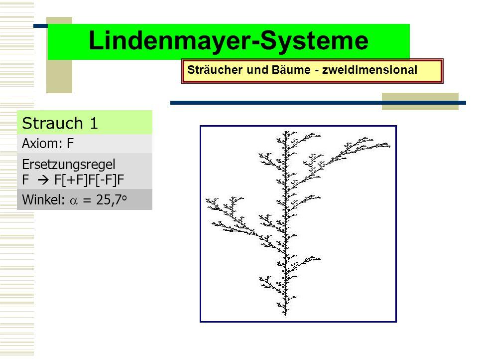 Lindenmayer-Systeme Sträucher und Bäume - zweidimensional Axiom: F Ersetzungsregel F  F[+F]F[-F]F Winkel:  = 25,7 o Strauch 1