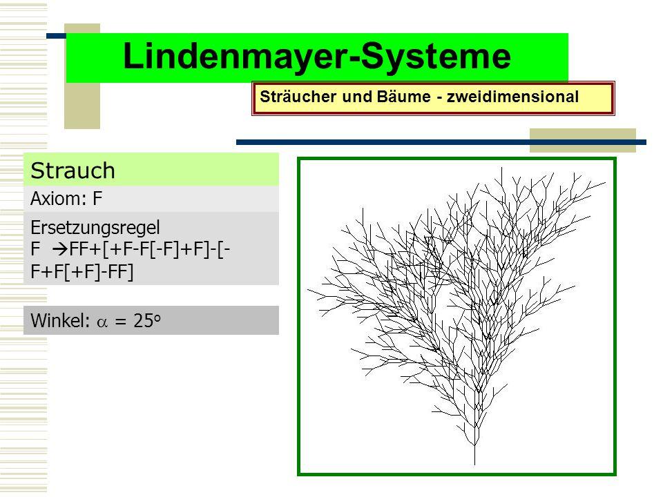 Lindenmayer-Systeme Sträucher und Bäume - zweidimensional Axiom: F Ersetzungsregel F  FF+[+F-F[-F]+F]-[- F+F[+F]-FF] Winkel:  = 25 o Strauch
