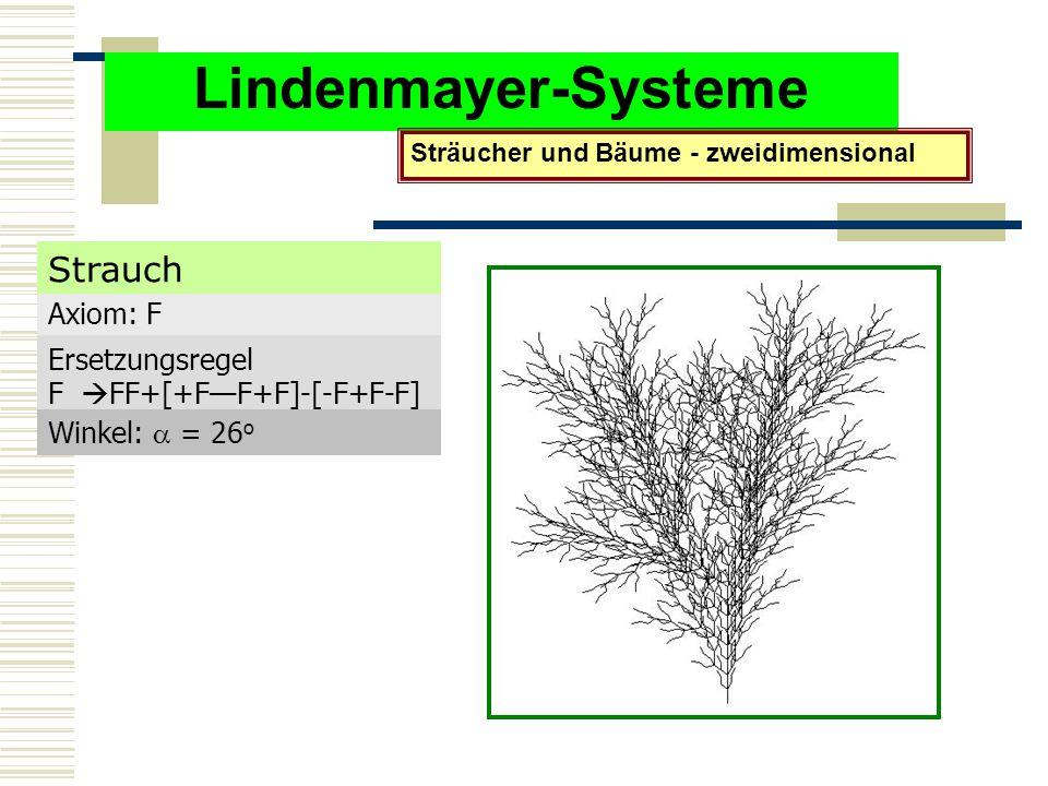 Lindenmayer-Systeme Sträucher und Bäume - zweidimensional Axiom: F Ersetzungsregel F  FF+[+F—F+F]-[-F+F-F] Winkel:  = 26 o Strauch