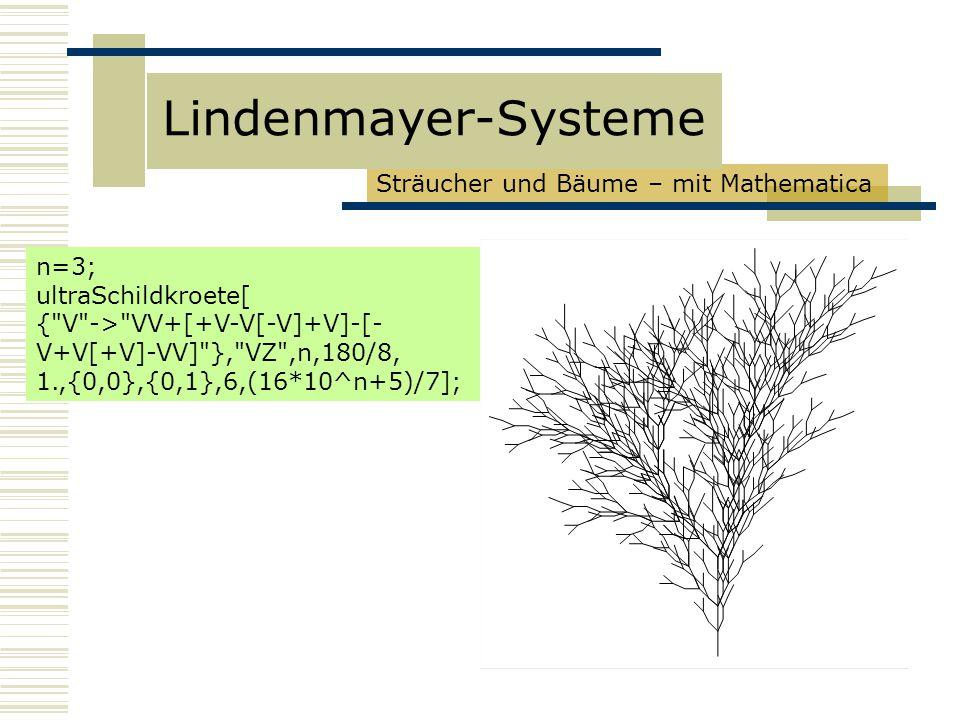 Sträucher und Bäume – mit Mathematica Lindenmayer-Systeme n=3; ultraSchildkroete[ { V -> VV+[+V-V[-V]+V]-[- V+V[+V]-VV] }, VZ ,n,180/8, 1.,{0,0},{0,1},6,(16*10^n+5)/7];