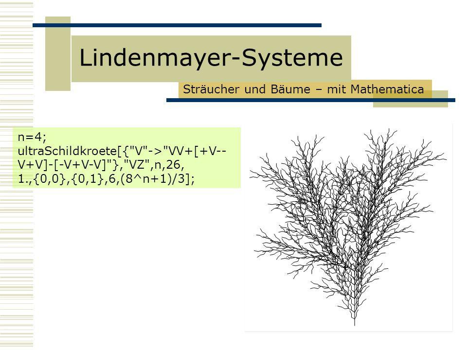 Sträucher und Bäume – mit Mathematica Lindenmayer-Systeme n=4; ultraSchildkroete[{ V -> VV+[+V-- V+V]-[-V+V-V] }, VZ ,n,26, 1.,{0,0},{0,1},6,(8^n+1)/3];