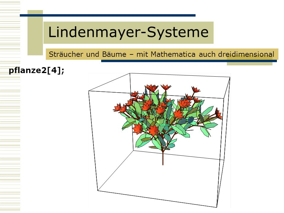 Lindenmayer-Systeme pflanze2[4];
