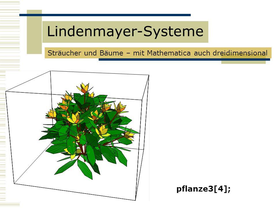 pflanze3[4]; Lindenmayer-Systeme Sträucher und Bäume – mit Mathematica auch dreidimensional