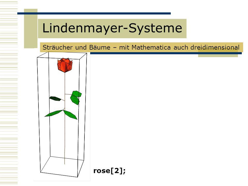 rose[2]; Sträucher und Bäume – mit Mathematica auch dreidimensional Lindenmayer-Systeme