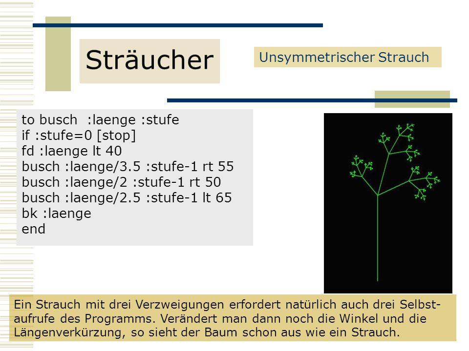 to busch :laenge :stufe if :stufe=0 [stop] fd :laenge lt 40 busch :laenge/3.5 :stufe-1 rt 55 busch :laenge/2 :stufe-1 rt 50 busch :laenge/2.5 :stufe-1 lt 65 bk :laenge end Unsymmetrischer Strauch Sträucher Ein Strauch mit drei Verzweigungen erfordert natürlich auch drei Selbst- aufrufe des Programms.