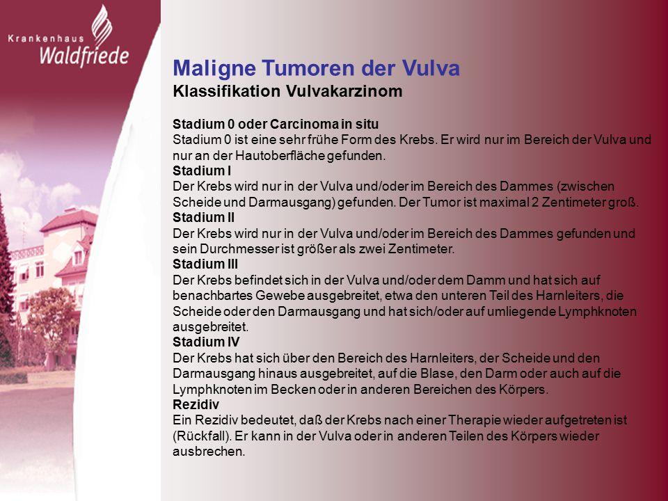 Maligne Tumoren der Vulva Klassifikation Vulvakarzinom Stadium 0 oder Carcinoma in situ Stadium 0 ist eine sehr frühe Form des Krebs.