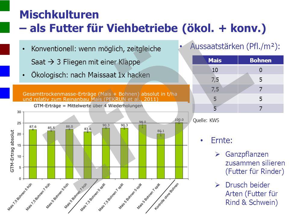 Mischkulturen – als Futter für Viehbetriebe (ökol. + konv.) Saatzeitpunkt der Bohnen:  Früh: Mais im 2-3-Blattstadium  Spät: Mais im 5-6-Blattstadiu