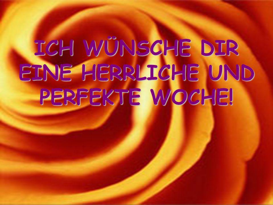 ICH WÜNSCHE DIR EINE HERRLICHE UND PERFEKTE WOCHE!