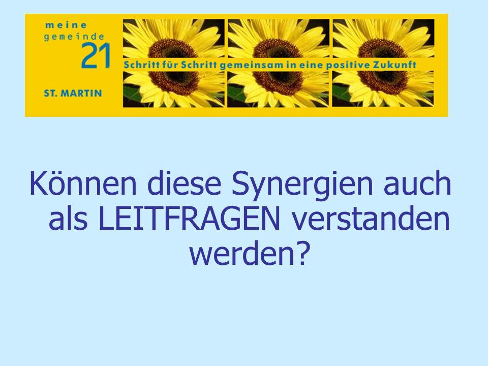 Können diese Synergien auch als LEITFRAGEN verstanden werden?
