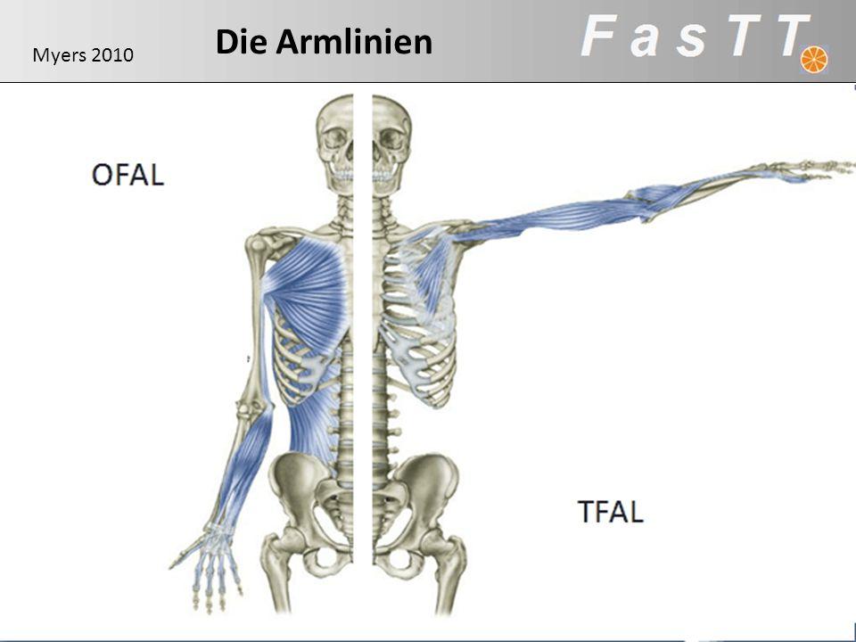 Die Armlinien OFAL Myers 2010