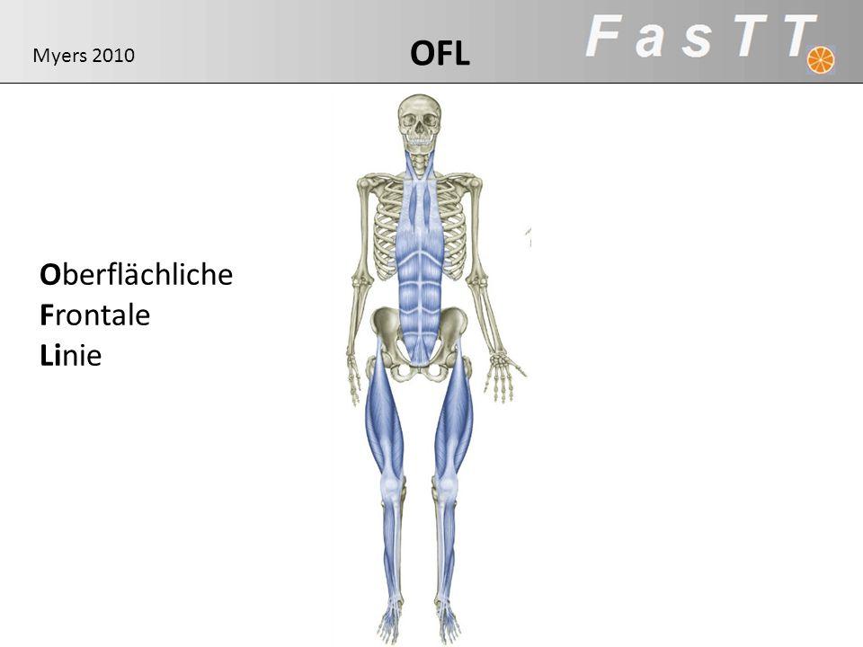 OFL Oberflächliche Frontale Linie Myers 2010