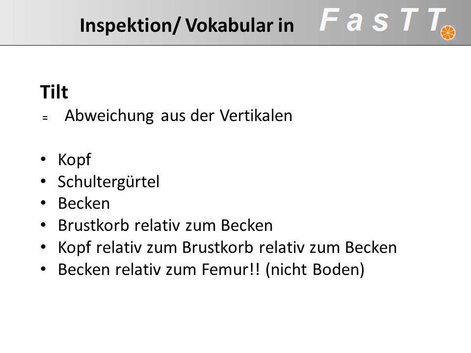 Inspektion/ Vokabular in Tilt = Abweichung aus der Vertikalen Kopf Schultergürtel Becken Brustkorb relativ zum Becken Kopf relativ zum Brustkorb relat