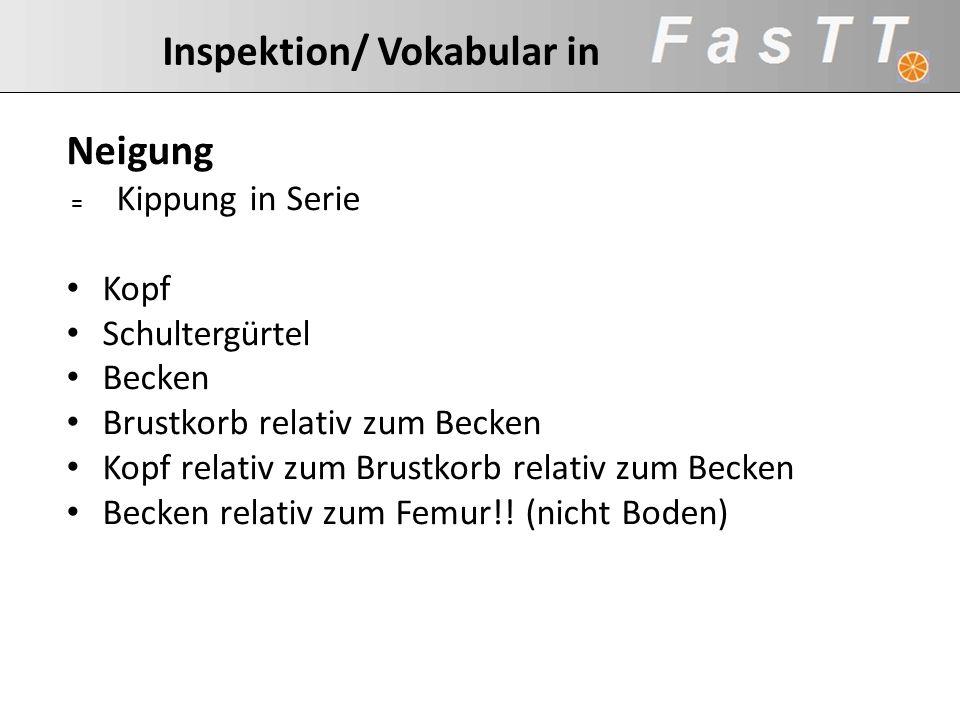 Inspektion/ Vokabular in Neigung = Kippung in Serie Kopf Schultergürtel Becken Brustkorb relativ zum Becken Kopf relativ zum Brustkorb relativ zum Bec