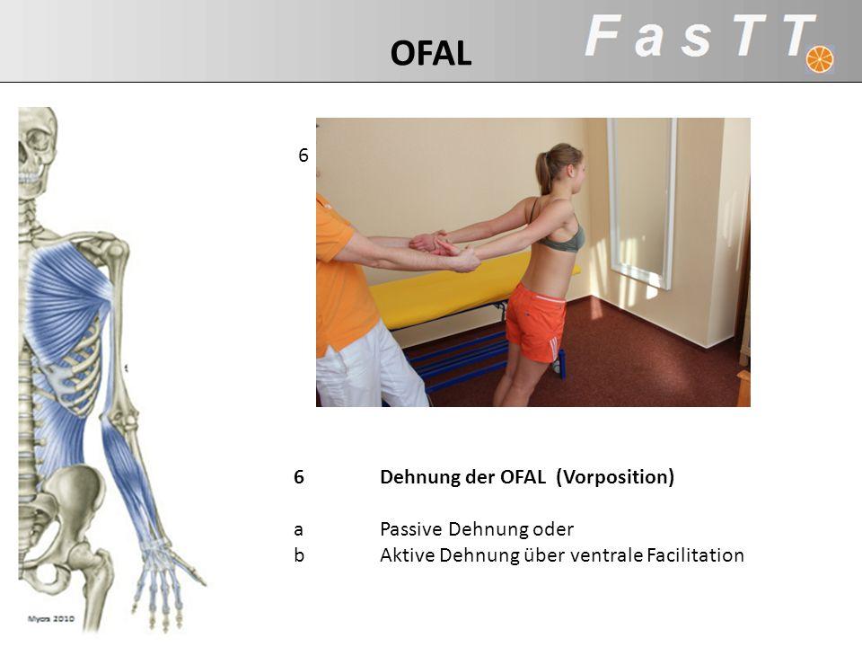 6 6Dehnung der OFAL (Vorposition) aPassive Dehnung oder bAktive Dehnung über ventrale Facilitation OFAL