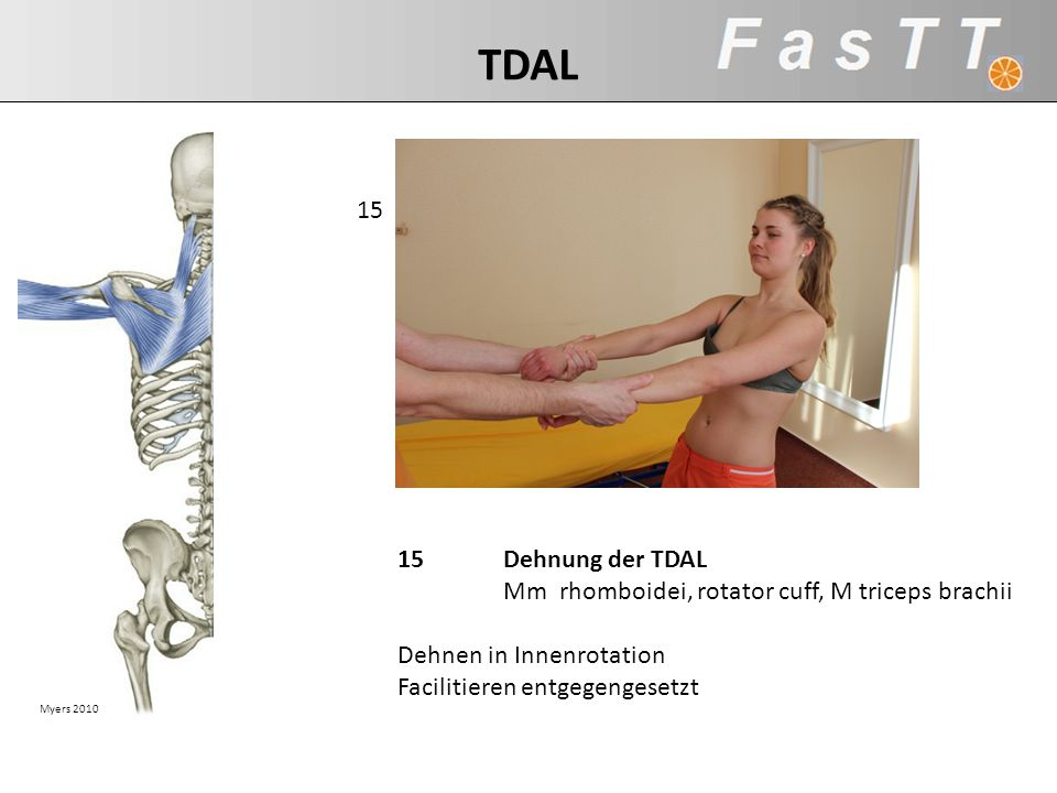 Myers 2010 15Dehnung der TDAL Mm rhomboidei, rotator cuff, M triceps brachii Dehnen in Innenrotation Facilitieren entgegengesetzt 15 TDAL