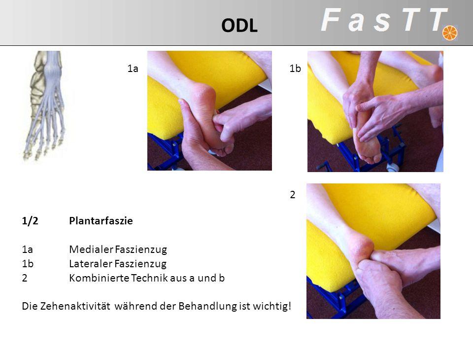 1/2Plantarfaszie 1aMedialer Faszienzug 1bLateraler Faszienzug 2Kombinierte Technik aus a und b Die Zehenaktivität während der Behandlung ist wichtig!