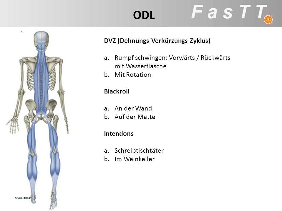 DVZ (Dehnungs-Verkürzungs-Zyklus) a.Rumpf schwingen: Vorwärts / Rückwärts mit Wasserflasche b.Mit Rotation Blackroll a.An der Wand b.Auf der Matte Int