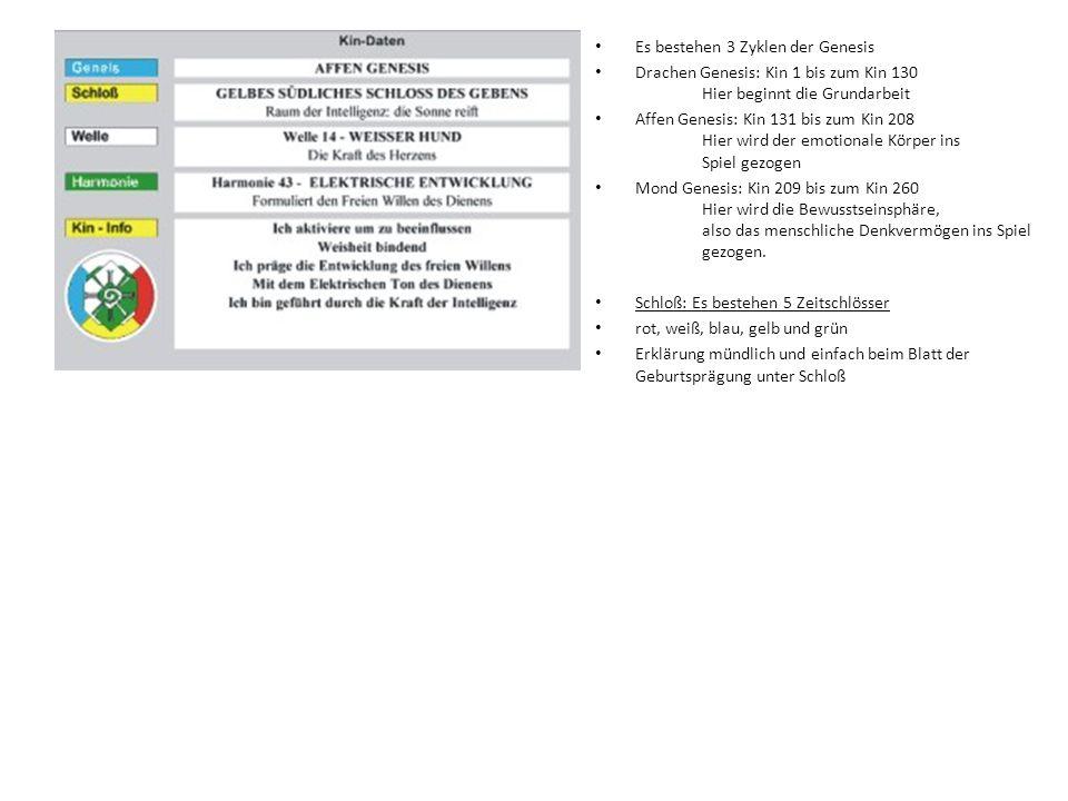 Es bestehen 3 Zyklen der Genesis Drachen Genesis: Kin 1 bis zum Kin 130 Hier beginnt die Grundarbeit Affen Genesis: Kin 131 bis zum Kin 208 Hier wird