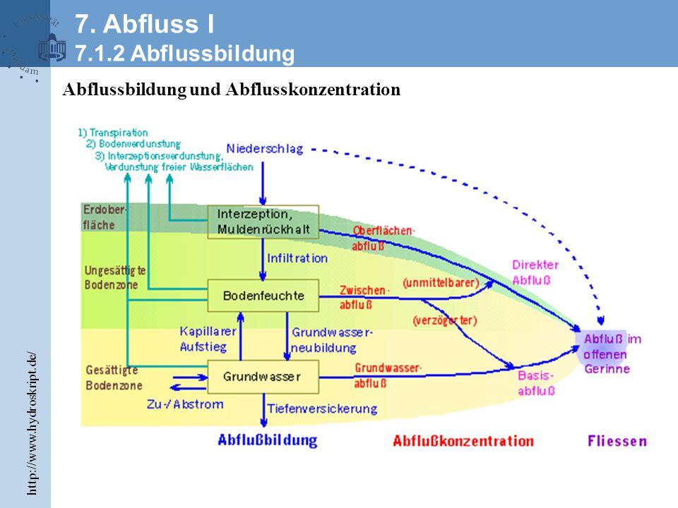 Abflussbildung und Abflusskonzentration 7.