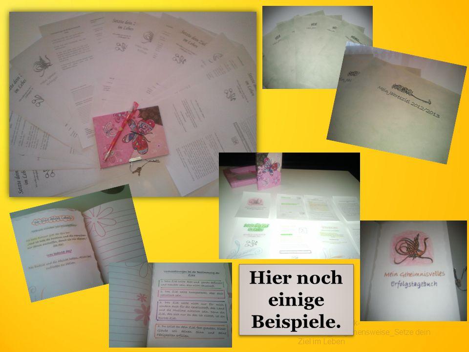 medienbibliothek- islam.de_Vorgehensweise_Setze dein Ziel im Leben Hier noch einige Beispiele.