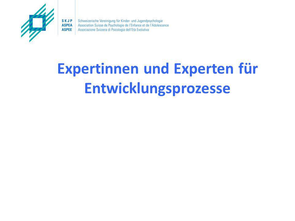Expertinnen und Experten für Entwicklungsprozesse