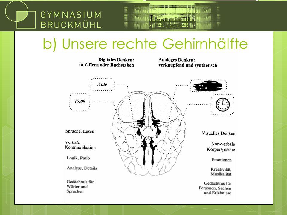 b) Unsere rechte Gehirnhälfte