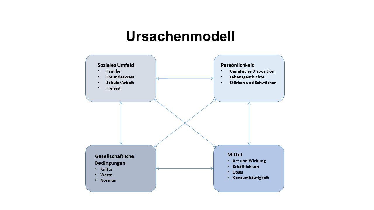 Ursachenmodell Soziales Umfeld Familie Freundeskreis Schule/Arbeit Freizeit Persönlichkeit Genetische Disposition Lebensgeschichte Stärken und Schwäch
