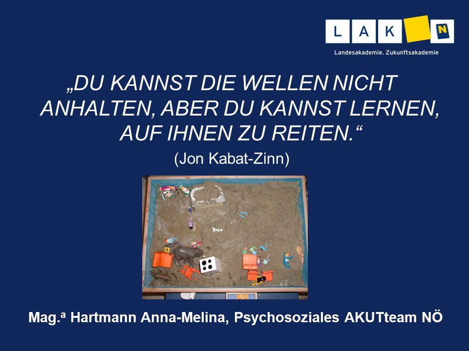 """""""DU KANNST DIE WELLEN NICHT ANHALTEN, ABER DU KANNST LERNEN, AUF IHNEN ZU REITEN."""" (Jon Kabat-Zinn) Mag. a Hartmann Anna-Melina, Psychosoziales AKUTte"""