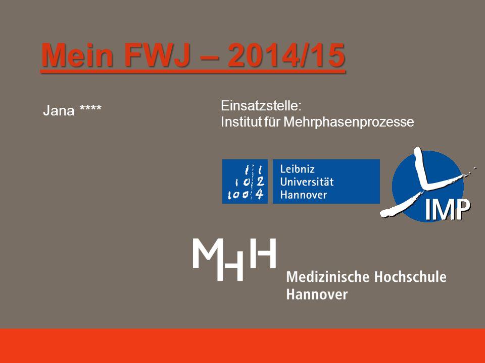 Mein FWJ – 2014/15 Jana **** Einsatzstelle: Institut für Mehrphasenprozesse