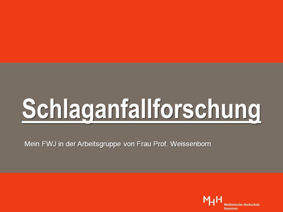 Schlaganfallforschung Mein FWJ in der Arbeitsgruppe von Frau Prof. Weissenborn