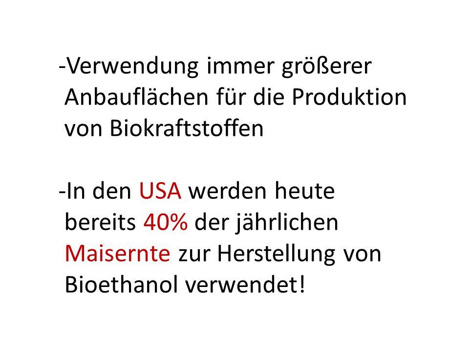 -Verwendung immer größerer Anbauflächen für die Produktion von Biokraftstoffen -In den USA werden heute bereits 40% der jährlichen Maisernte zur Herstellung von Bioethanol verwendet!